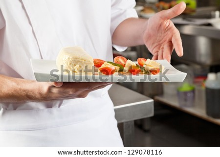 Midsection of male chef presenting dish in industrial kitchen