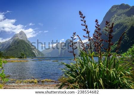 Milford Sound. Fiordland national park, New Zealand - stock photo