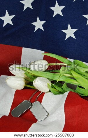 military dog tags and tulips on flag - stock photo