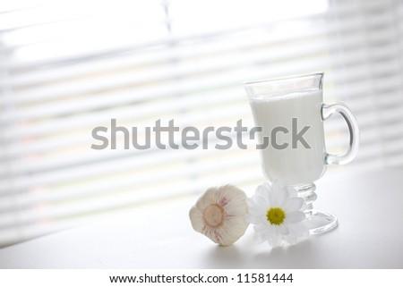 Milk in the glass and fresh garlic / copyspace - stock photo