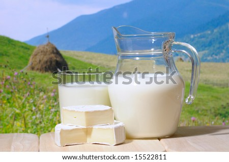 Milk jug  against a mountains in background - stock photo