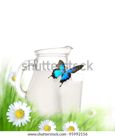 Milk jug and glass on the grass with chamomiles flowers over white - stock photo