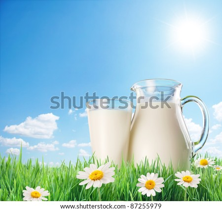 Milk jug and glass on the grass with chamomiles. On a background of the sunny sky with clouds. - stock photo