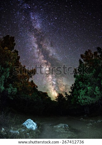 Milky Way. Beautiful summer night sky with stars, trail, stones and green trees. Crimea mountains - stock photo