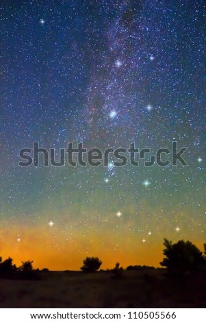 milky way over a trees silhouette - stock photo