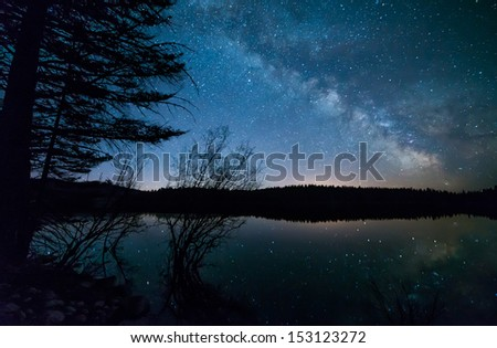 Milky way with trees - stock photo