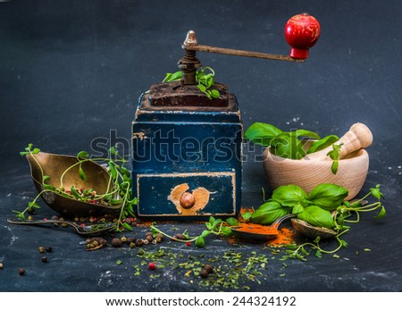Mill for spices with basilicas and oregano on a dark background - stock photo