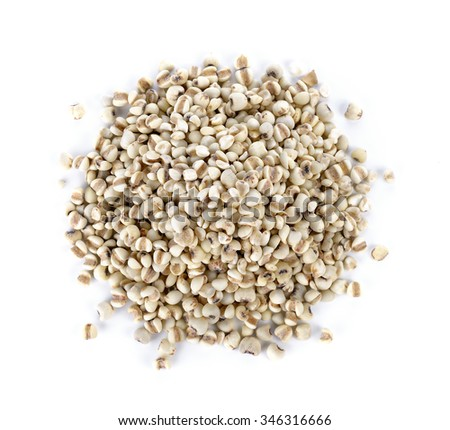 Millet rice, millet grains on white background - stock photo