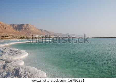 Mineral salts on coast of the Dead Sea - stock photo