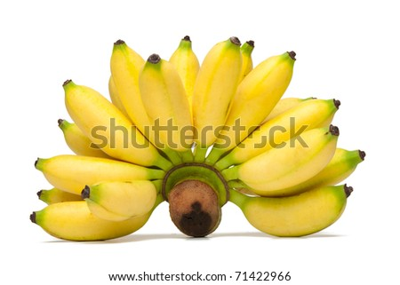 Mini bananas isolated on a white background