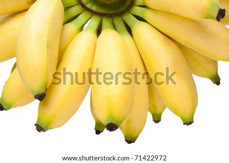 Mini bananas isolated on a white background - stock photo