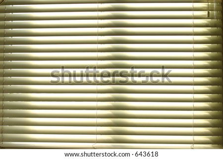 Mini Blinds - stock photo