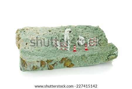 Miniature health inspectors scientists on a slice of moldy bread - stock photo
