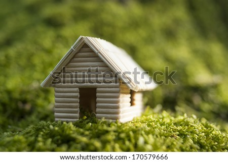 Miniature house (model), made of toothpicks and dry grass. Photographed on the wood moss.