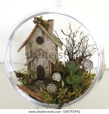 Miniature House terrarium fairy house succulents plant