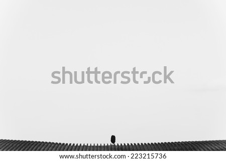 minimalistic picture of Tuscan vineyard with solitaire tree in black and white  - stock photo