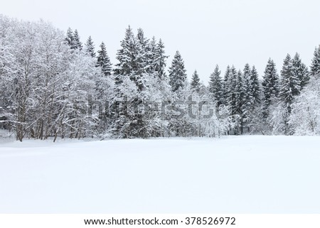Minimalistic snow landscape with frozen trees