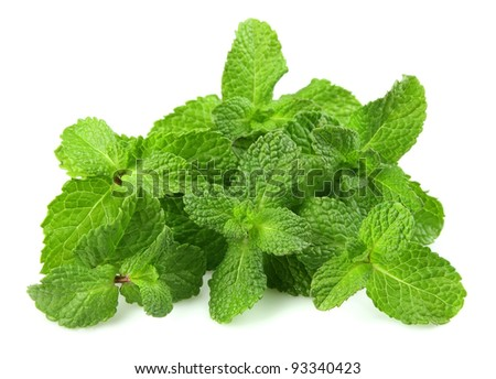 Mint leaf close up on a white background - stock photo