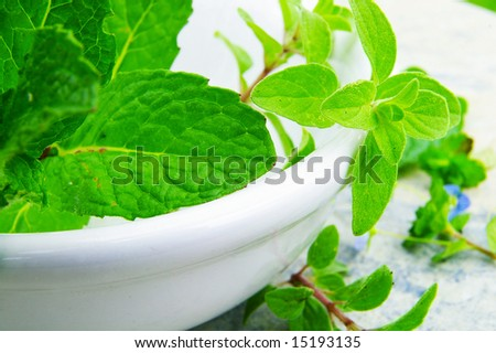 Mint leaves and oregano closeup in a white dish