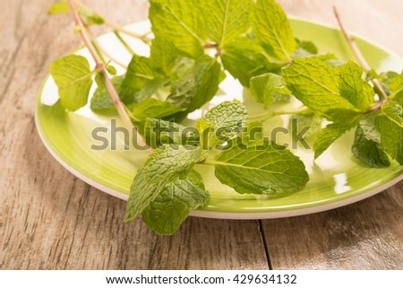 mint leaves in a green plate on wood background