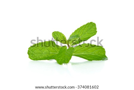 mint leaves isolated on white background . - stock photo
