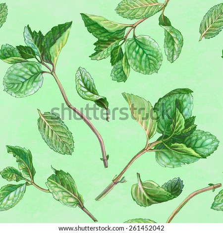 Mint Leaves Pencil Drawing Seamless Pattern