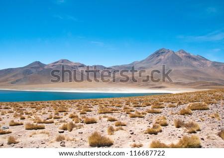 Miscanti lagoon in San Pedro de Atacama, Chile - stock photo