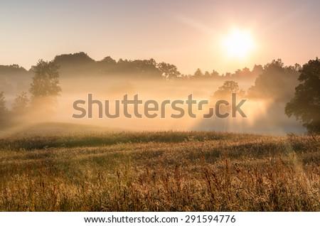 Mist drifts across the rural landscape illuminated by the rising sun, Pomerania, Poland - stock photo