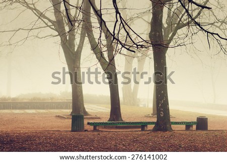Mist in the park in autumn. Color filter applied. - stock photo
