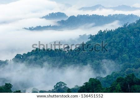 Mist on the mountain - stock photo