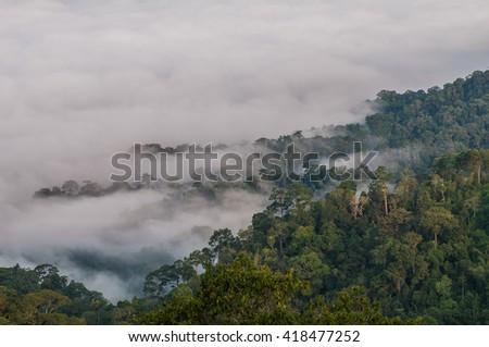 Mist on the Mountain in thailand - stock photo