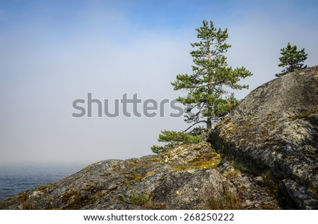 mist over the water and stones - stock photo