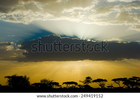 Misty african sunset