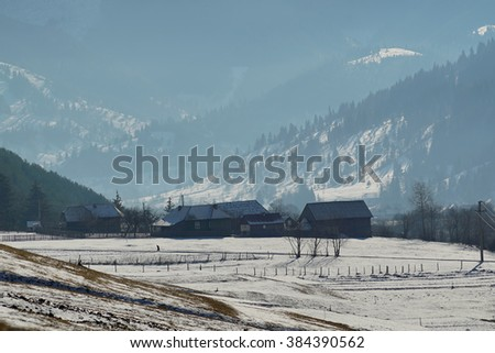 Misty and peaceful landscape of snow covered frozen lake rounded by pine forest