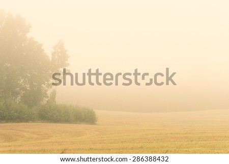 Misty autumn morning with harvested crop field and trees