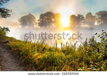 Misty dawn and silhouettes of the trees by a river - stock photo