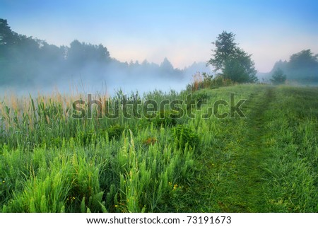 Misty dawn in spring on the shores of Lake - stock photo