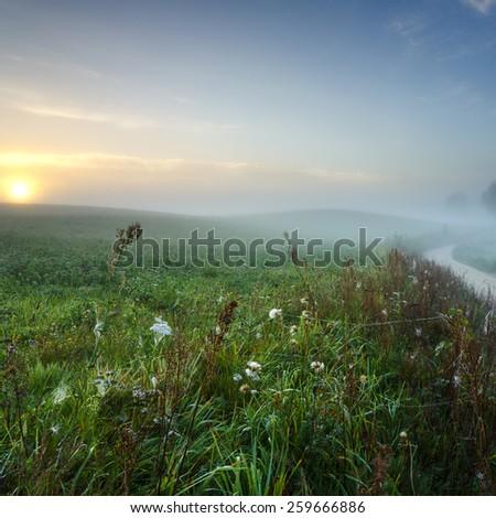 Misty Field Sunrise in North Poland/ Misty Field Sunrise - stock photo