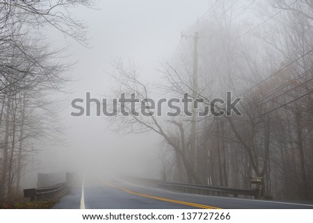 Misty foggy dramatic forest road - stock photo