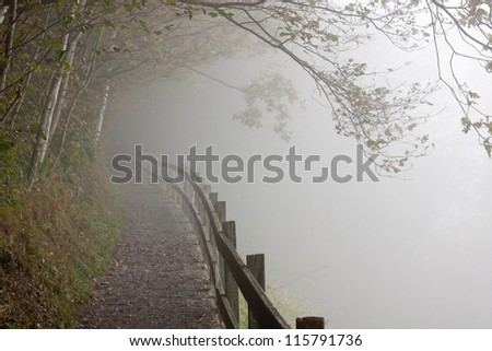 Misty forest path with wooden fence leads to a foggy unknown - stock photo