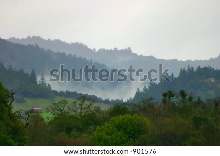 Misty Hillside - stock photo