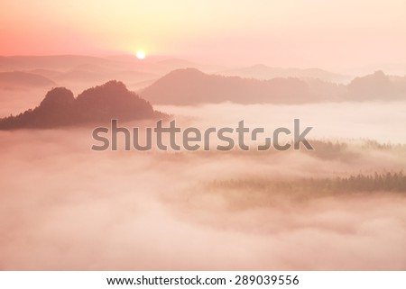 Misty melancholic morning. View into long deep valley full of fresh  spring mist. Fall landscape within daybreak after rainy night - stock photo