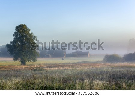Misty morning over small village on Podlasie, Eastern Poland - stock photo