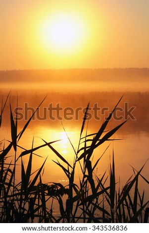 Misty sunrise on a small river - stock photo