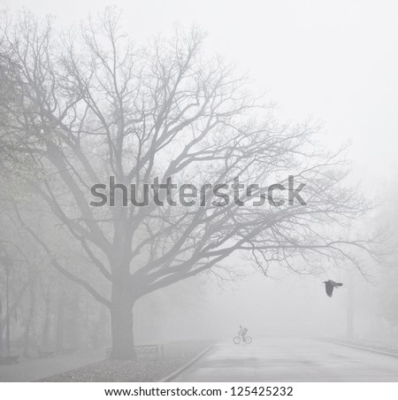 Misty town in the early morning. - stock photo