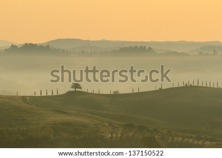 Misty Tuscan landscape in yellow dawn light - stock photo