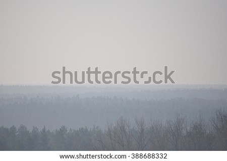 Misty view over a forest on a winter day
