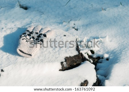 Mitten on snow.
