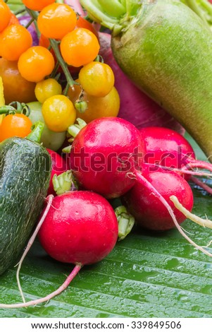 Mix colorful vegetables