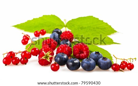 Mix of blueberries, raspberries and currants